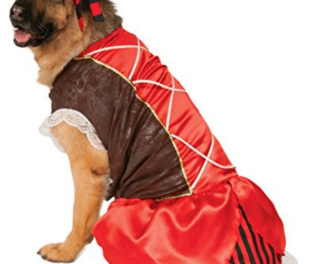 Big Dogs Pirate Girl Dog Costume Xxx Large