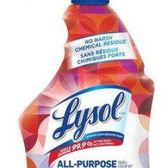 Lysol Antibacterial Kitchen Cleaner Best Designs - Trigger 650ml | Walmart Canada