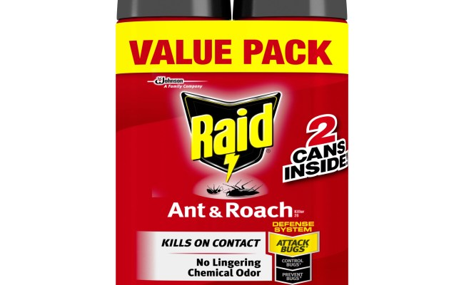 Raid Ant Roach Killer 26 Outdoor Fresh 17 5 Oz 2 Ct