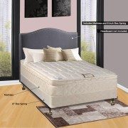Spinal Solution 9 Pillowtop Fully Assembled Orthopedic Mattress And Box Spring With Frame Queen