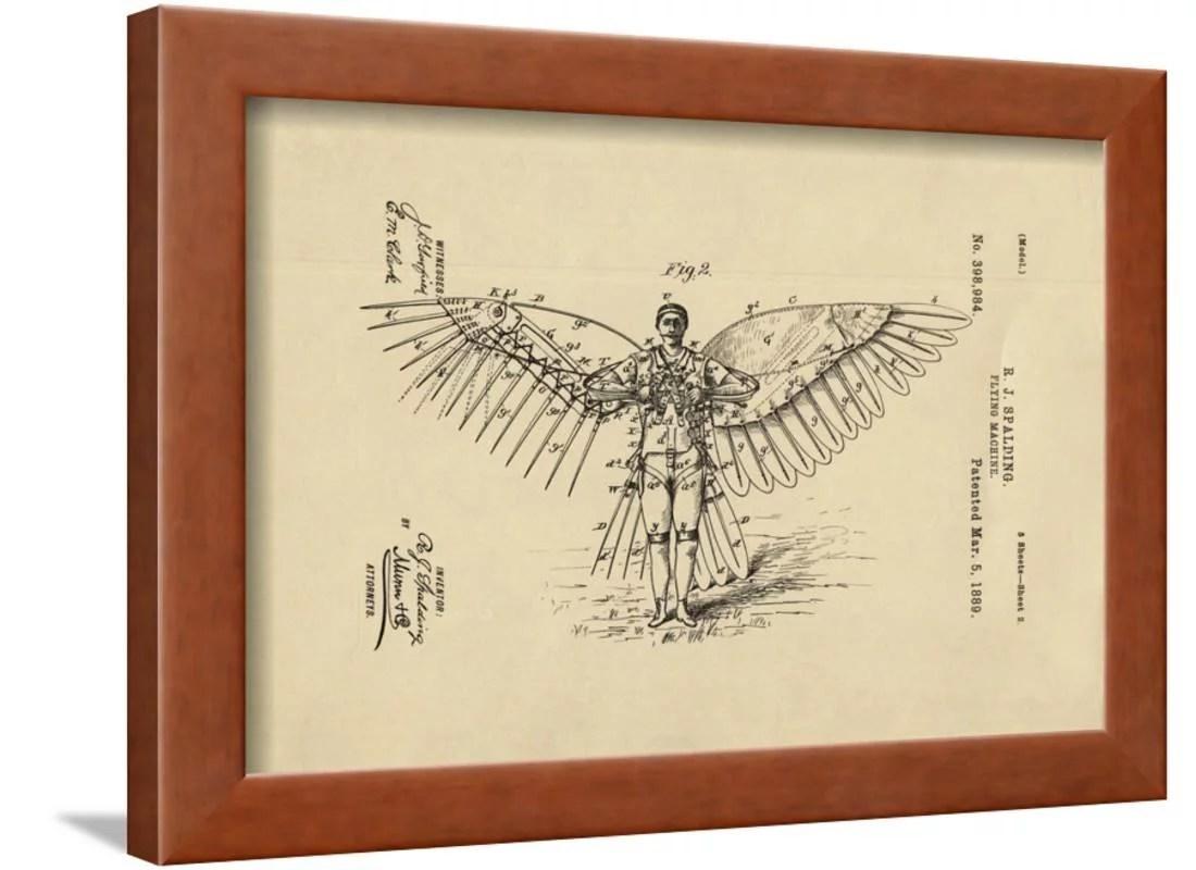 golden eagle skeleton diagram sample network for small business of winged flying machine framed print wall art walmart com