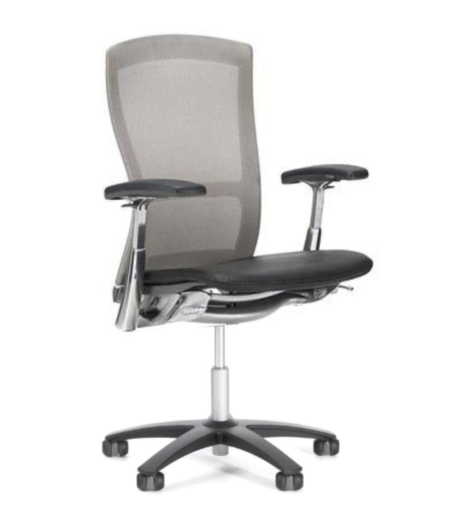 Life Chair By Knoll Gray Mesh Back Black Seat  Fully