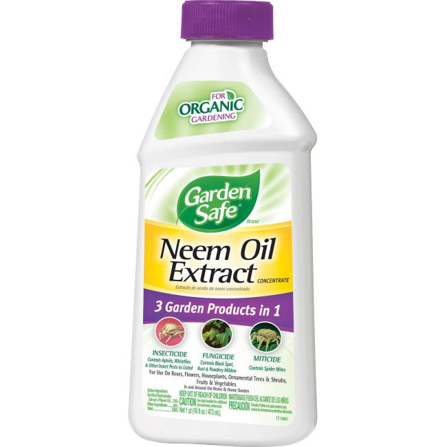 Garden Safe Neem Oil Fungicide, Insecticide, Miticide, 16oz Concentrate