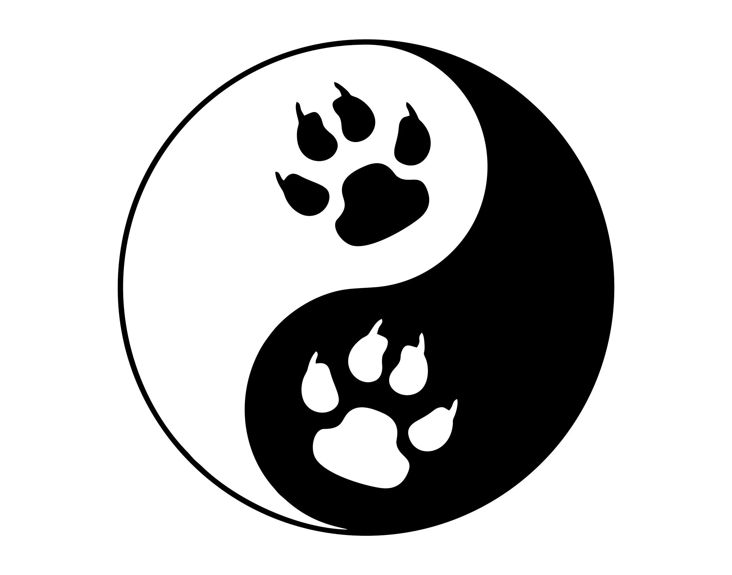 yin yang symbol with