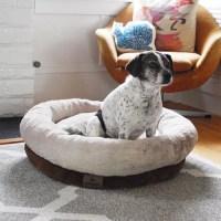 R2P Pet Ltd. Stuft Regal Dreamer Round Plush Dog Bed ...