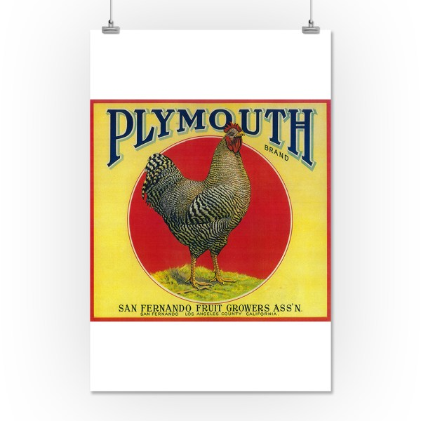 Plymouth Orange Label 16x24 Giclee Print Wall