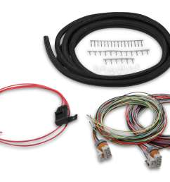holley performance 558 307 engine control module wiring harness for use with holley hp zoomed image [ 4866 x 3456 Pixel ]