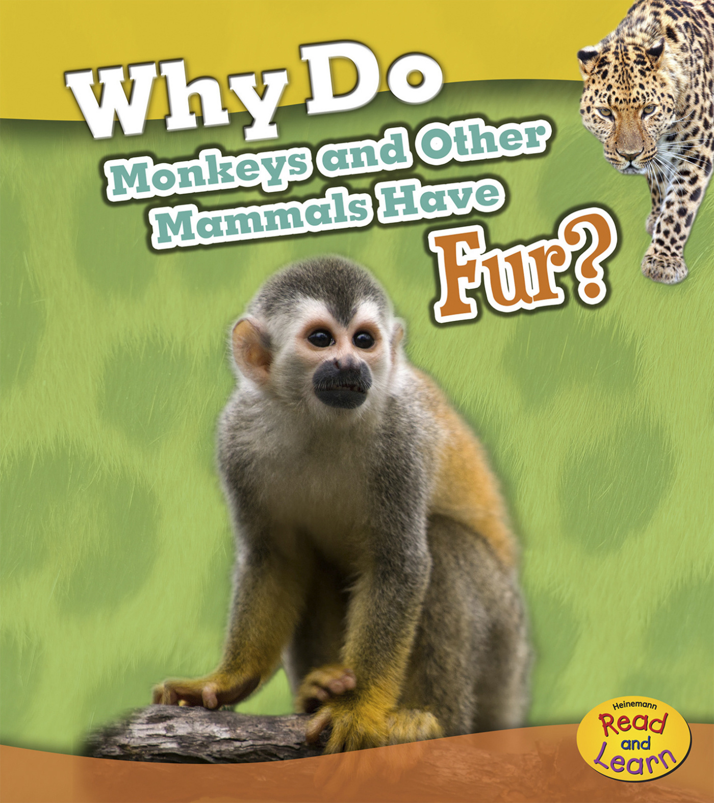 Animal Body Coverings Why Do Monkeys And Other Mammals