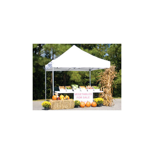 Tent Canopy Walmart Amp True Shelter White 10 X 20 Foot