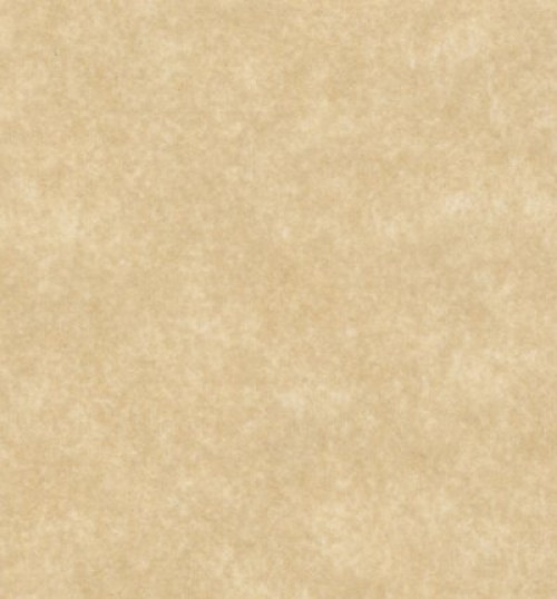 aged parchment paper on