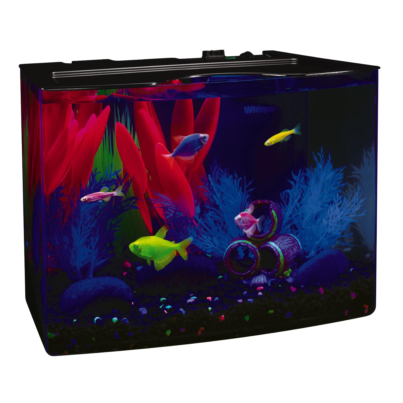 glofish 3 gallon aquarium