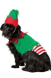 Elf Dog Costume - Walmart.com