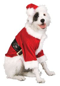 Santa Claus Dog Costume