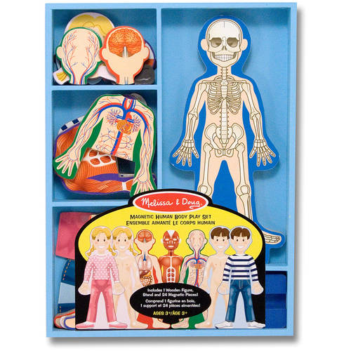 Melissa Amp Doug Magnetic Human Body Anatomy Play Set With