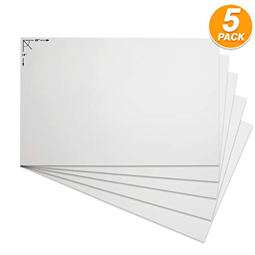 emraw poster board sturdy office white blanks sheets sign scrapbooking blank graphic display board durable for arts and crafts projects blank board 5