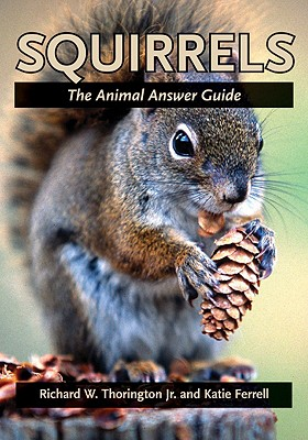 squirrels the animal answer