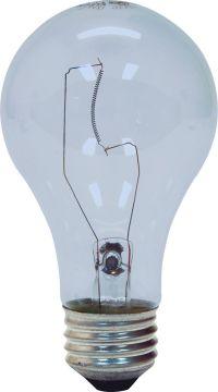 GE 81639-24 60-Watt A19 Reveal Crystal Clear, 24-Pack ...