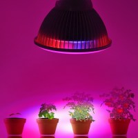 24W LED Grow Light Bulb High Efficient Plant Grow Lights ...