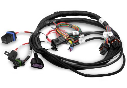 small resolution of engine control module wiring harnes
