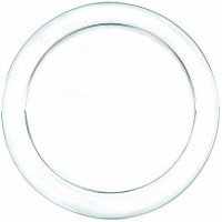Amscan Clear Plastic Dinner Plates (Pack of 24) - Walmart.com