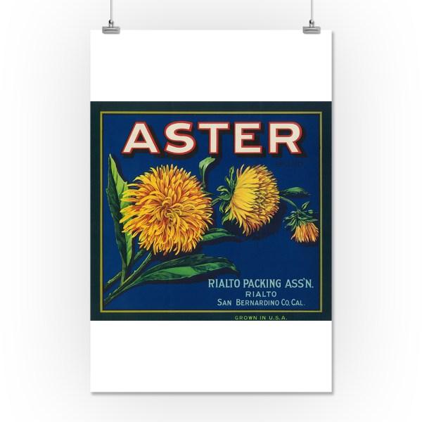 Aster Brand Citrus Crate Label - San Bernardino Ca 16x24