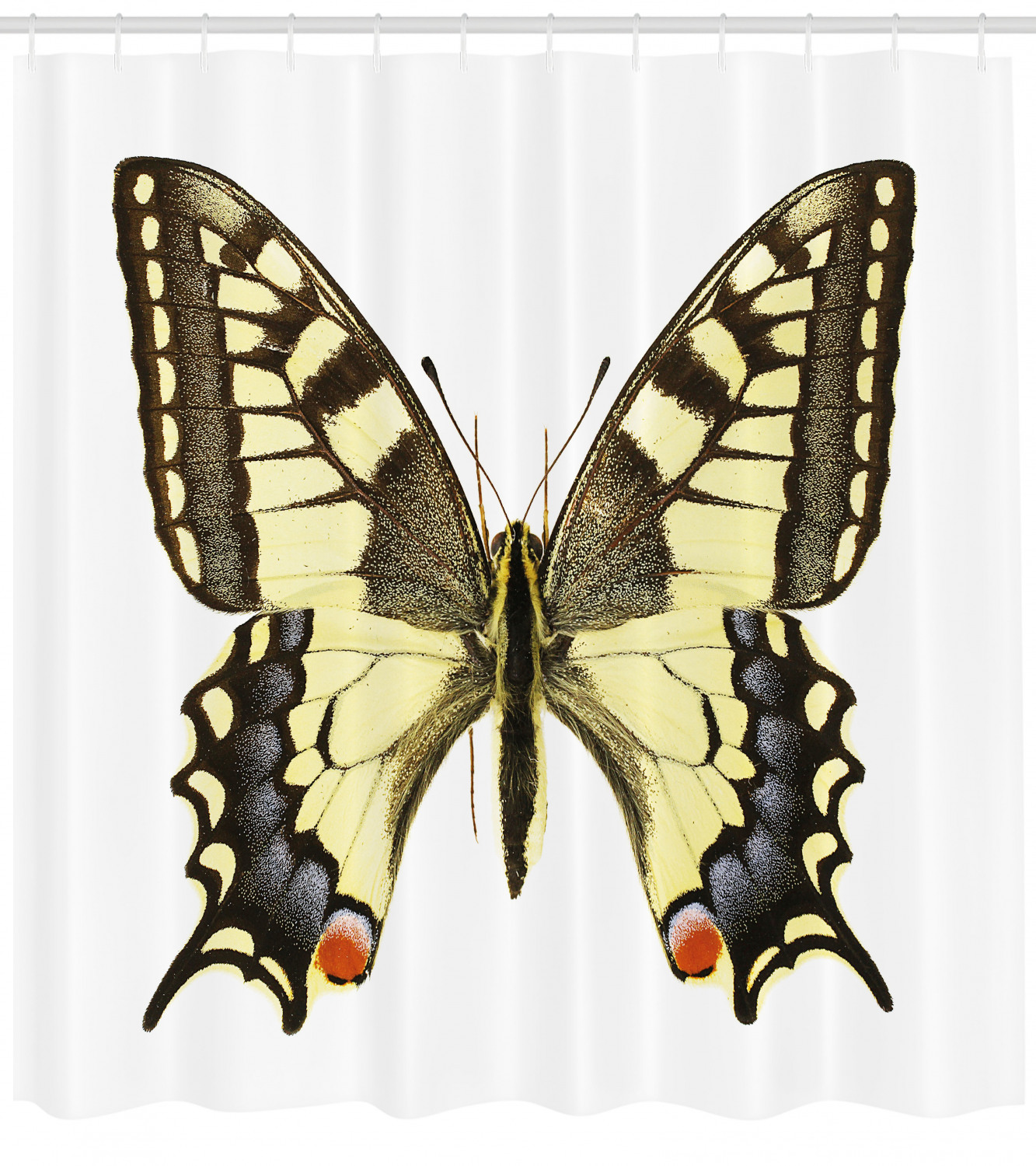 Swallowtail Butterfly Shower Curtain Yellow Papilio Machaon Old World Swallowtail Wildlife Biology Fabric Bathroom Set With Hooks Yellow Brown