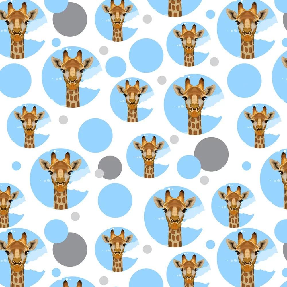 giraffe zoo animal safari