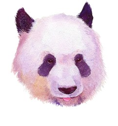 panda home wall shelf decor animal decorations watercolor prints walmart com [ 960 x 1200 Pixel ]