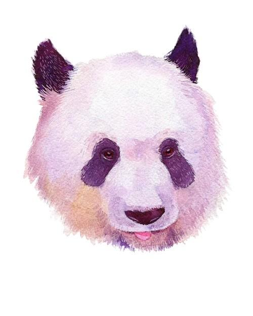 small resolution of panda home wall shelf decor animal decorations watercolor prints walmart com