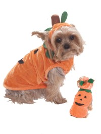 Dog Pumpkin Halloween Costume - Walmart.com