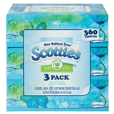 Scotties White Unscented 2ply Facial Tissues 120ct