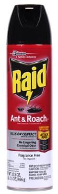 Raid 175 OZ Aerosol Ant Roach Killer Unscented 2PK