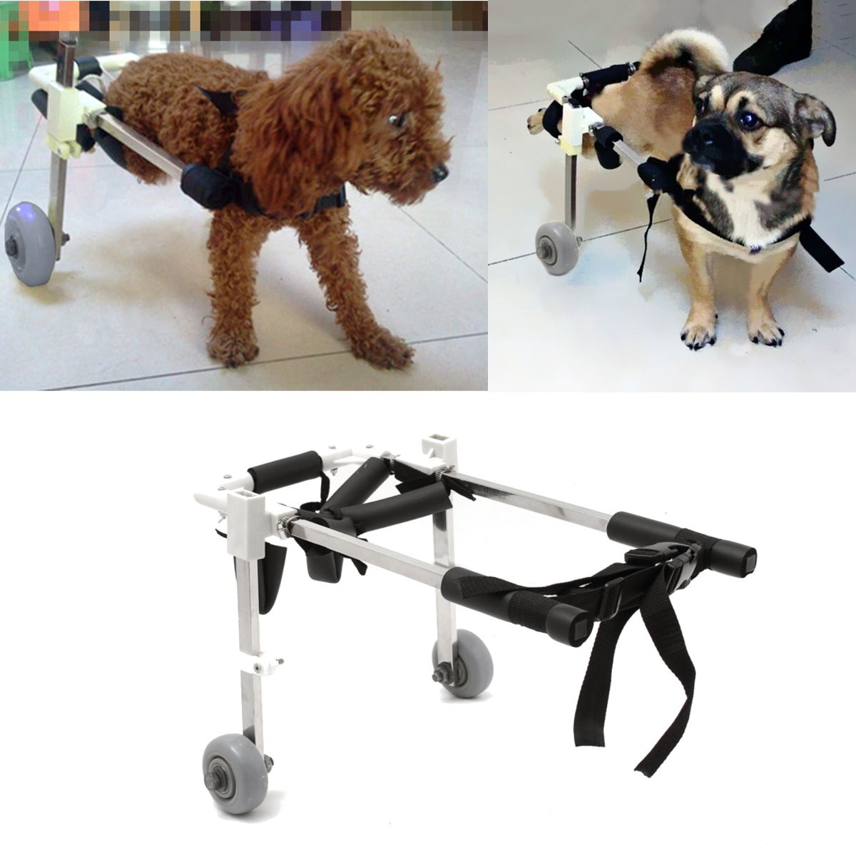 wheelchair dog posture care chair company prices 10 pet cart height for handicapped hind legs stainless steel walmart com