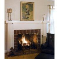 UniFlame 4 Panel Brass Filigree Fireplace Screen - Walmart.com