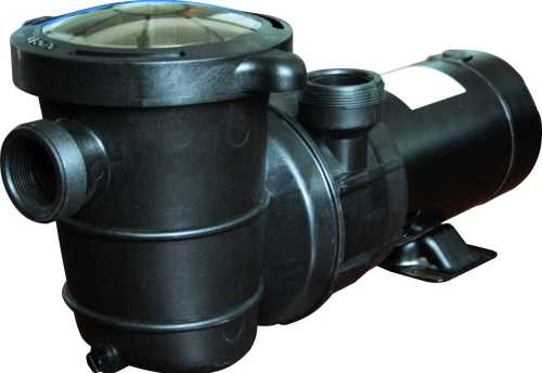 small resolution of high performance swimming pool pump above ground 1 5 hp 115v w 6 ft