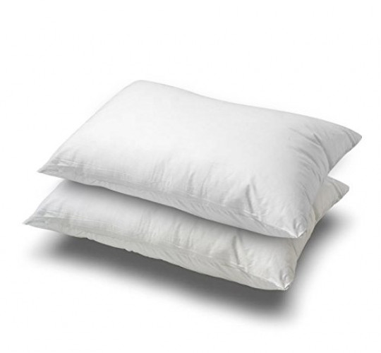 Better Down White Goose Feather and Down Pillow, Set of 2