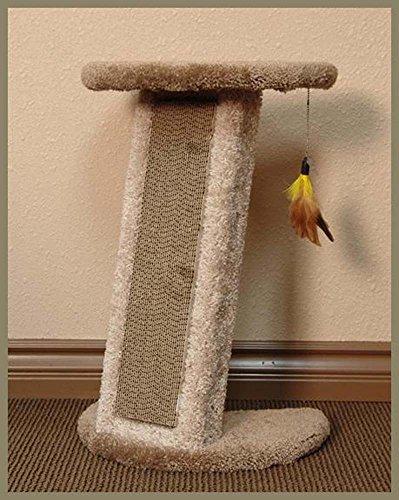 classy kitty couch corner