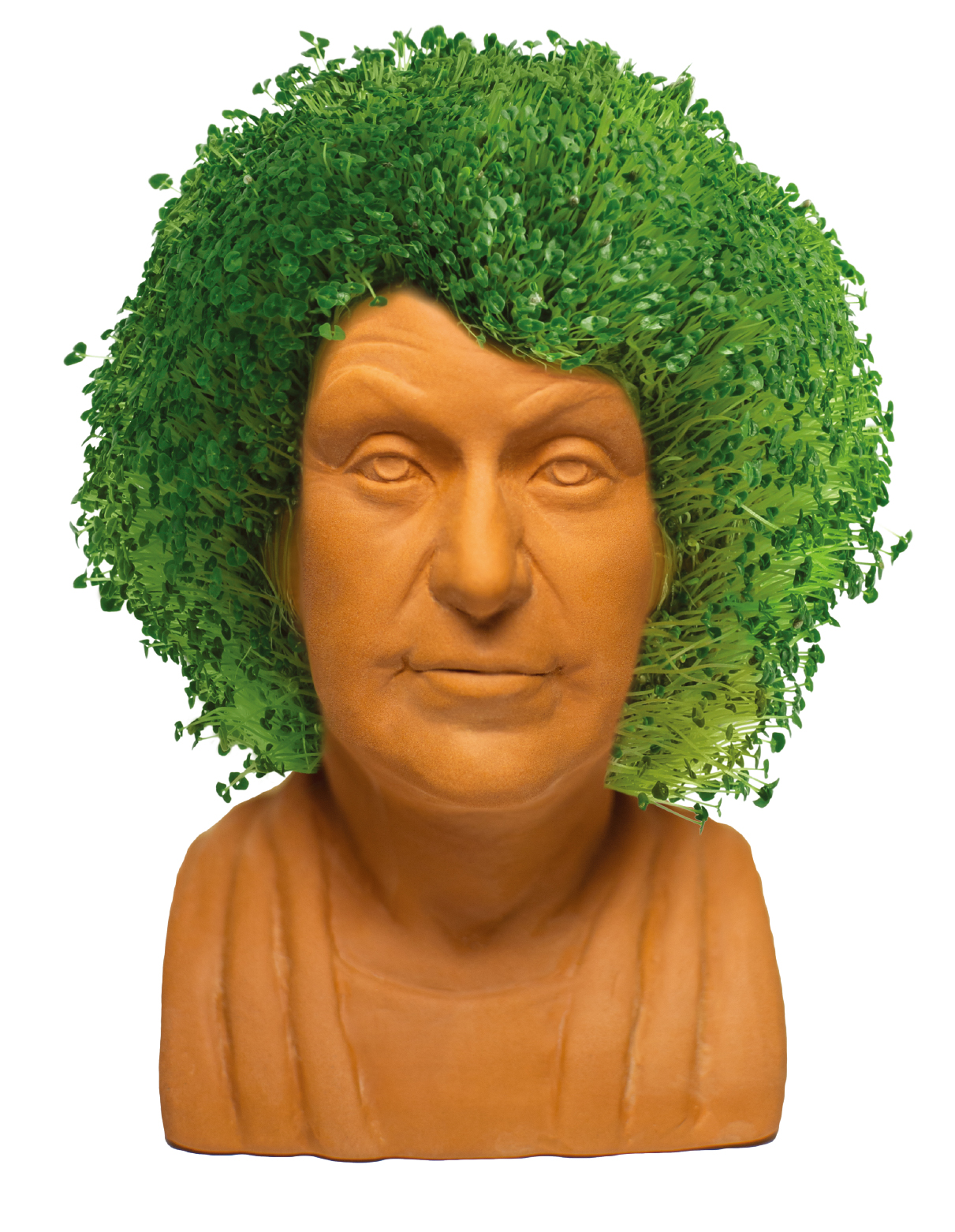 Chia Pet Images : images, Dorothy, Golden, Girls,, Arthur, Decorative, Pottery, Planter,, Grow,, Novelty, Walmart.com