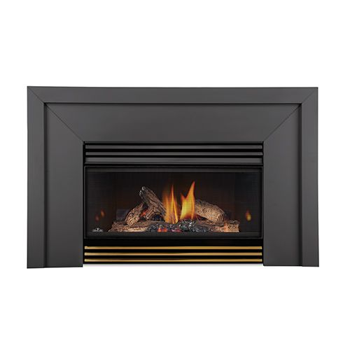 Roxbury Basic Fireplace Insert