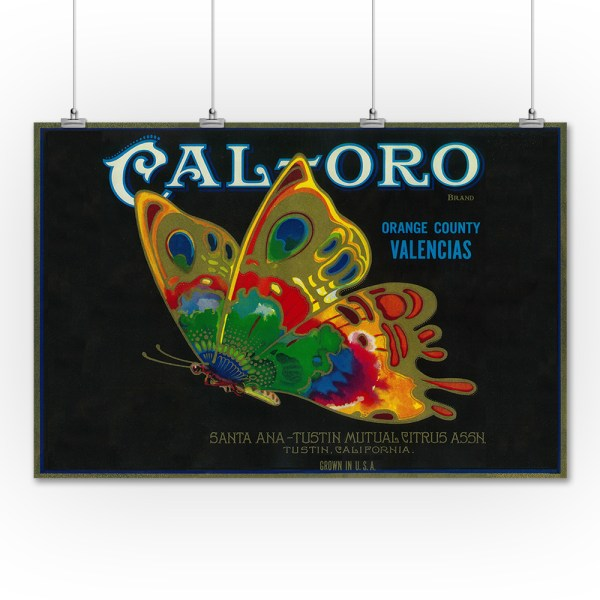 Cal Oro Butterfly Orange - Vintage Label 36x54 Giclee