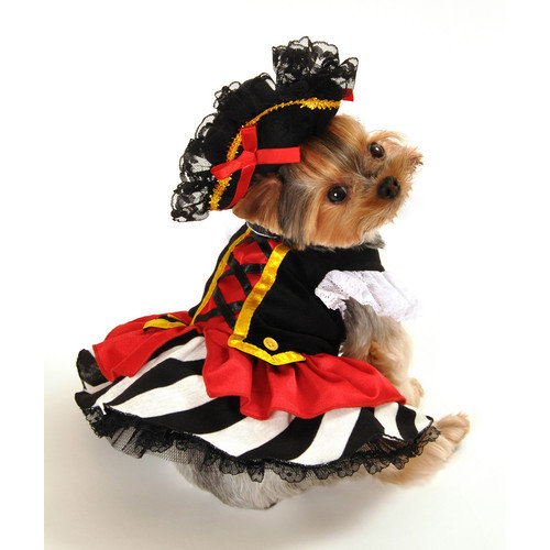 Anit Accessories Pirate Girl Dog Costume