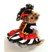 Anit Accessories Pirate Girl Dog Costume - Walmart.com