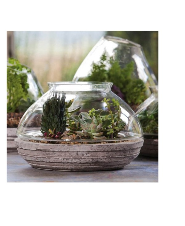 20 Walmart Terrarium Pictures And Ideas On Meta Networks