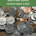 Personal Financial Survival Guide Putting My Finances In Order 2nd Edition Walmart Com