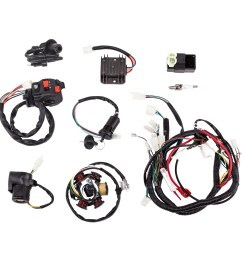 complete electrics wiring harness with wire loom magneto stator for gy6 125cc 150cc atv quad [ 1000 x 1000 Pixel ]