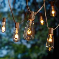 10 Count Glass Edison String Lights, indoor outdoor ...