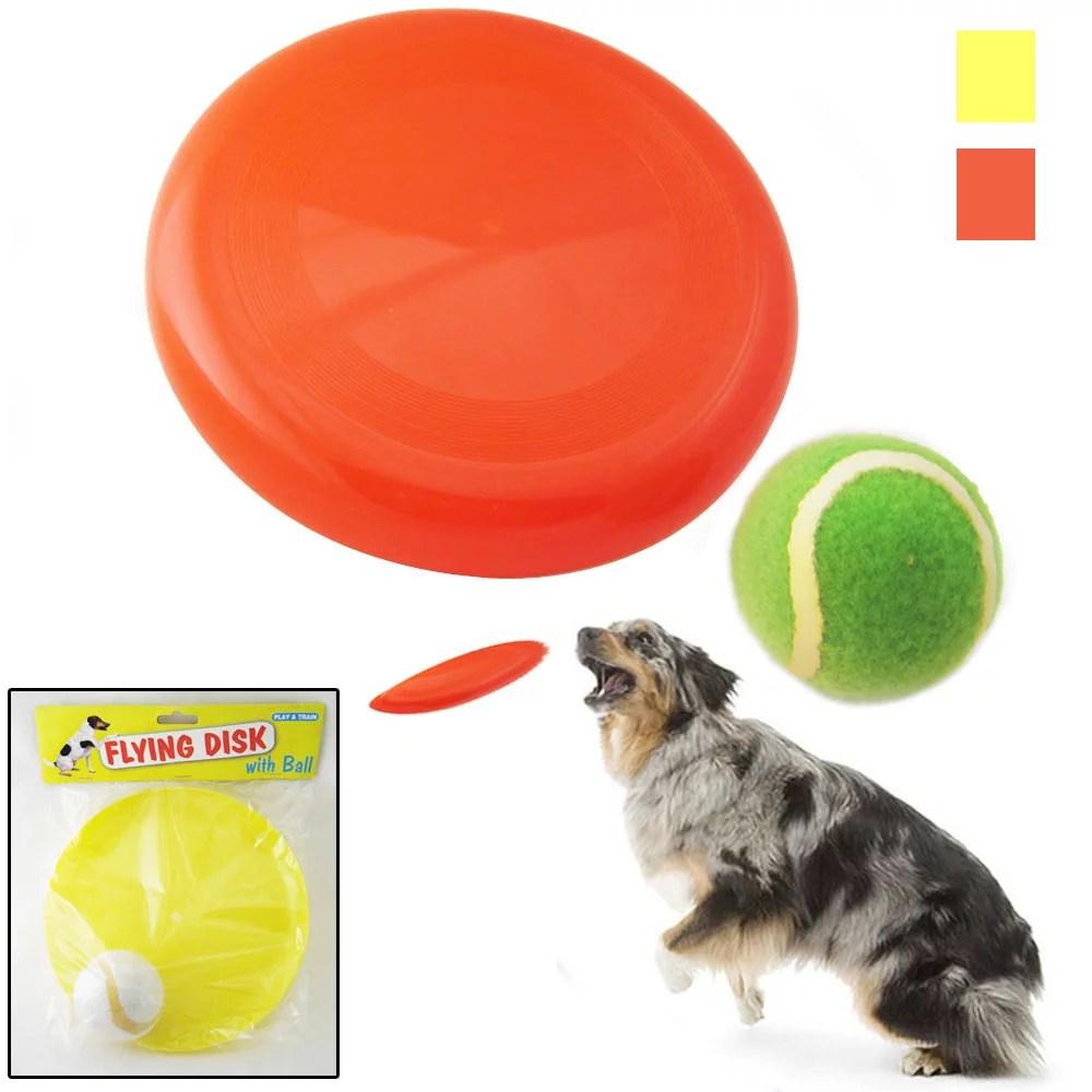 dog frisbee pet disc