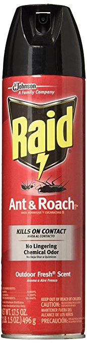 Raid Ant Roach Killer Insecticide SprayOutdoor Fresh