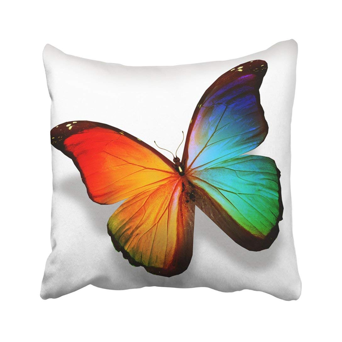 bright colored sofa pillows futon bed metal frame wopop black abstract color butterfly white colorful beauty