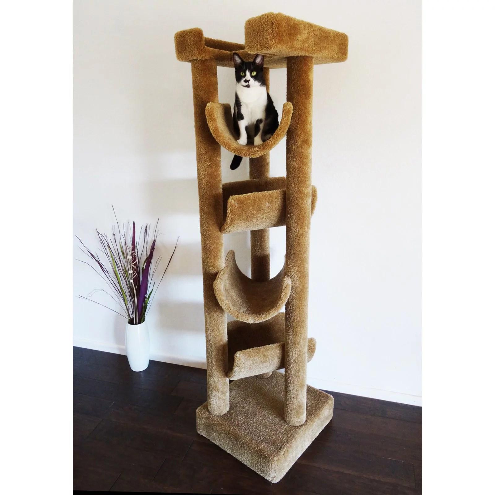 new cat condos 72